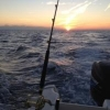 L'importanza della testa nella pesca - last post by Bluedeep