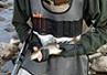 Roubasienne carpe-freddo poche catture? - last post by stanabarbi83